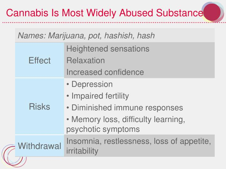 Cannabis Is Most Widely Abused Substance