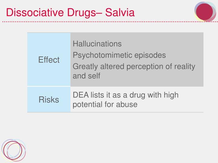 Dissociative Drugs– Salvia