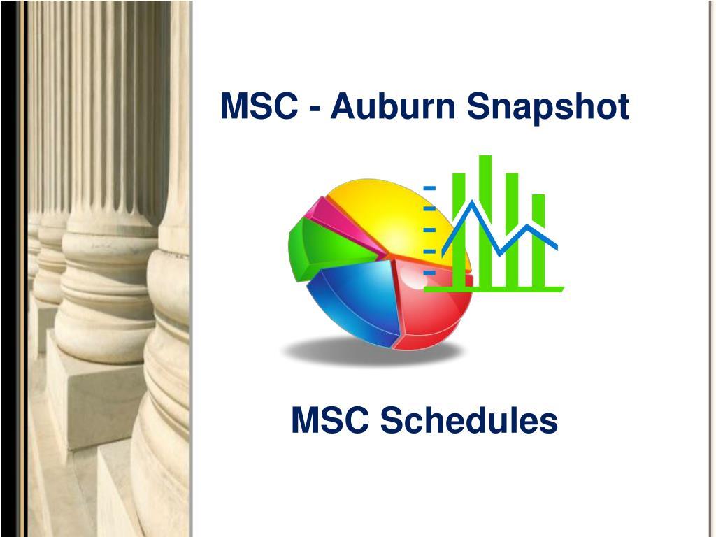 MSC - Auburn Snapshot
