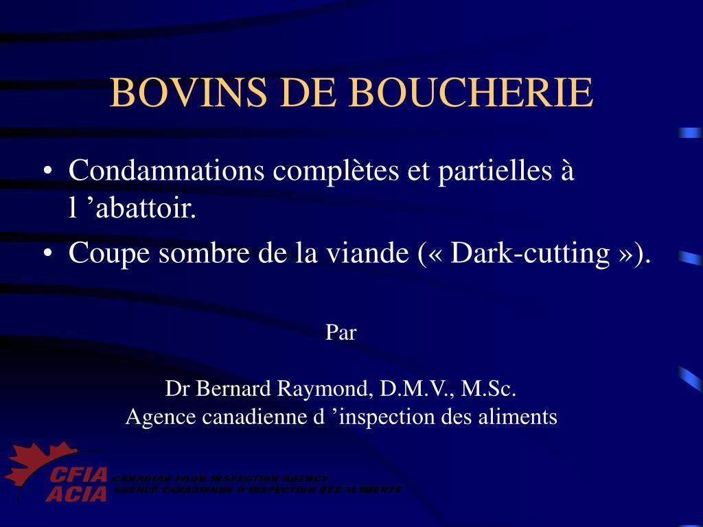 BOVINS DE BOUCHERIE