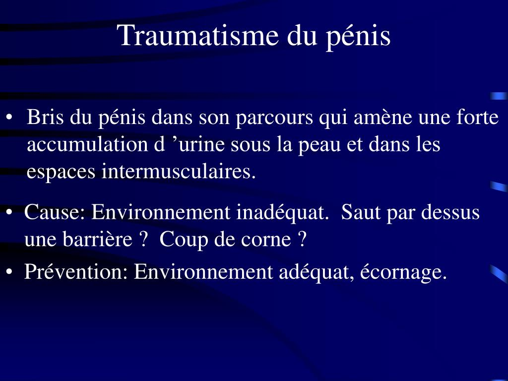 Traumatisme du pénis