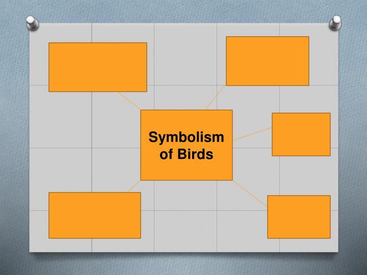 Symbolism of Birds