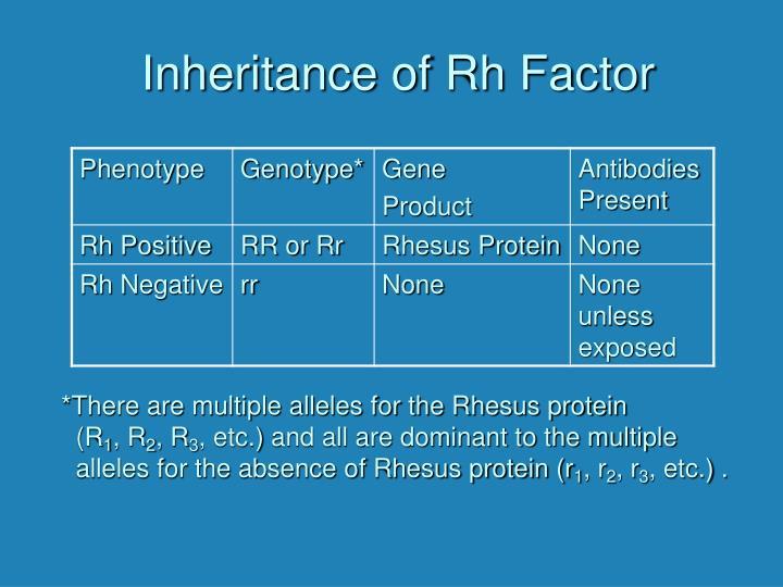 Inheritance of Rh Factor