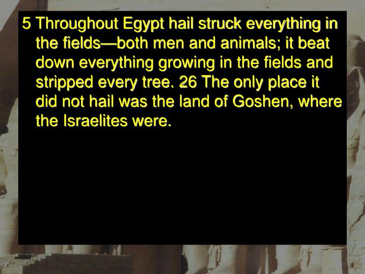5 Throughout Egypt hail struck everything in the fields—both men and animals; it beat down everything growing in the fields and stripped every tree. 26 The only place it did not hail was the land of Goshen, where the Israelites were.