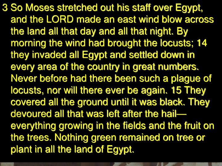 3 So Moses stretched out his staff over Egypt, and the LORD made an east wind blow across the land all that day and all that night. By morning the wind had brought the locusts; 14 they invaded all Egypt and settled down in every area of the country in great numbers. Never before had there been such a plague of locusts, nor will there ever be again. 15 They covered all the ground until it was black. They devoured all that was left after the hail—everything growing in the fields and the fruit on the trees. Nothing green remained on tree or plant in all the land of Egypt.