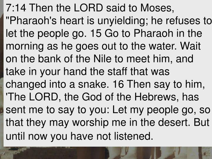 "7:14 Then the LORD said to Moses, ""Pharaoh's heart is unyielding; he refuses to let the people go. 15 Go to Pharaoh in the morning as he goes out to the water. Wait on the bank of the Nile to meet him, and take in your hand the staff that was changed into a snake. 16 Then say to him, 'The LORD, the God of the Hebrews, has sent me to say to you: Let my people go, so that they may worship me in the desert. But until now you have not listened."