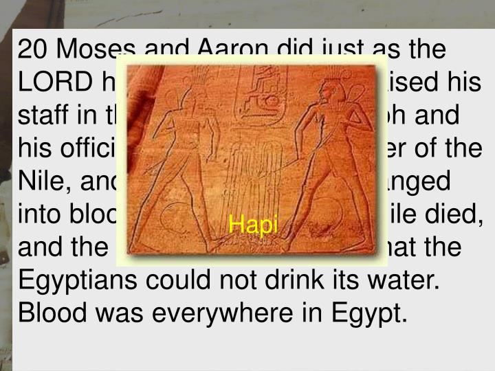 20 Moses and Aaron did just as the LORD had commanded. He raised his staff in the presence of Pharaoh and his officials and struck the water of the Nile, and all the water was changed into blood. 21 The fish in the Nile died, and the river smelled so bad that the Egyptians could not drink its water. Blood was everywhere in Egypt.
