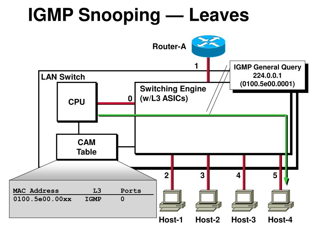 IGMP Snooping — Leaves