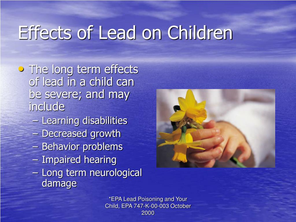 Effects of Lead on Children