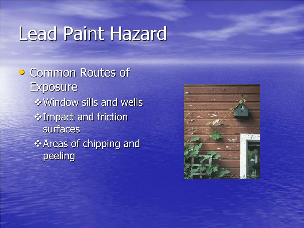Lead Paint Hazard