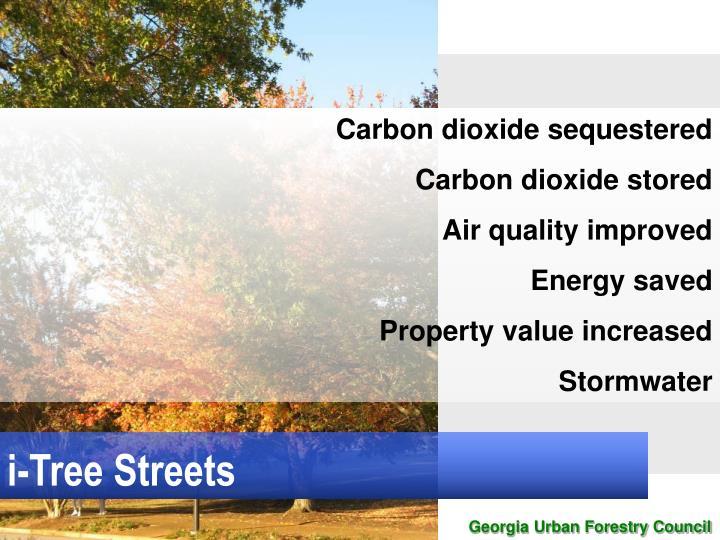 i-Tree Streets