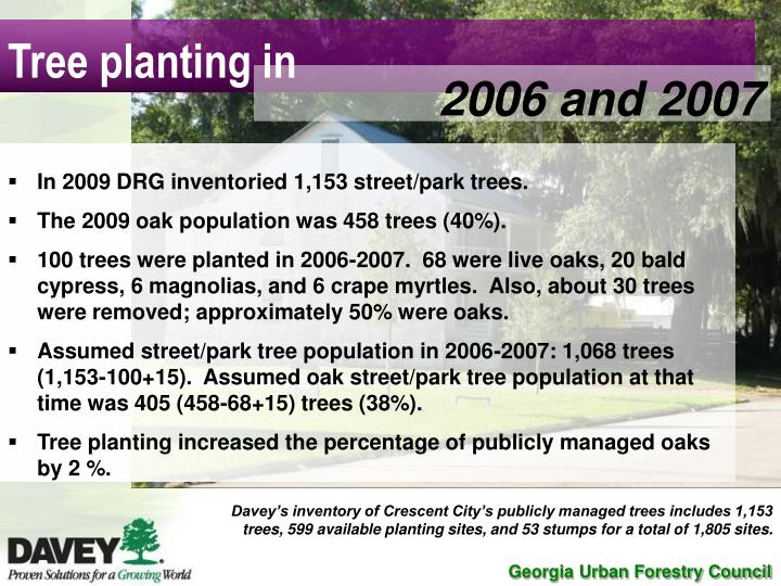 Tree planting in