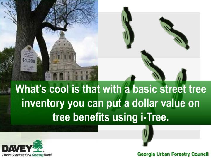 What's cool is that with a basic street tree inventory you can put a dollar value on tree benefits using i-Tree.