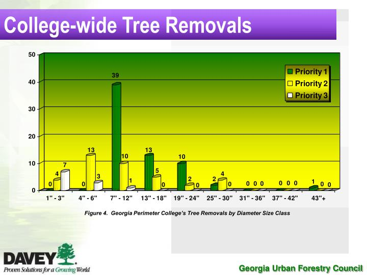 College-wide Tree Removals