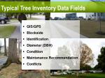 typical tree inventory data fields
