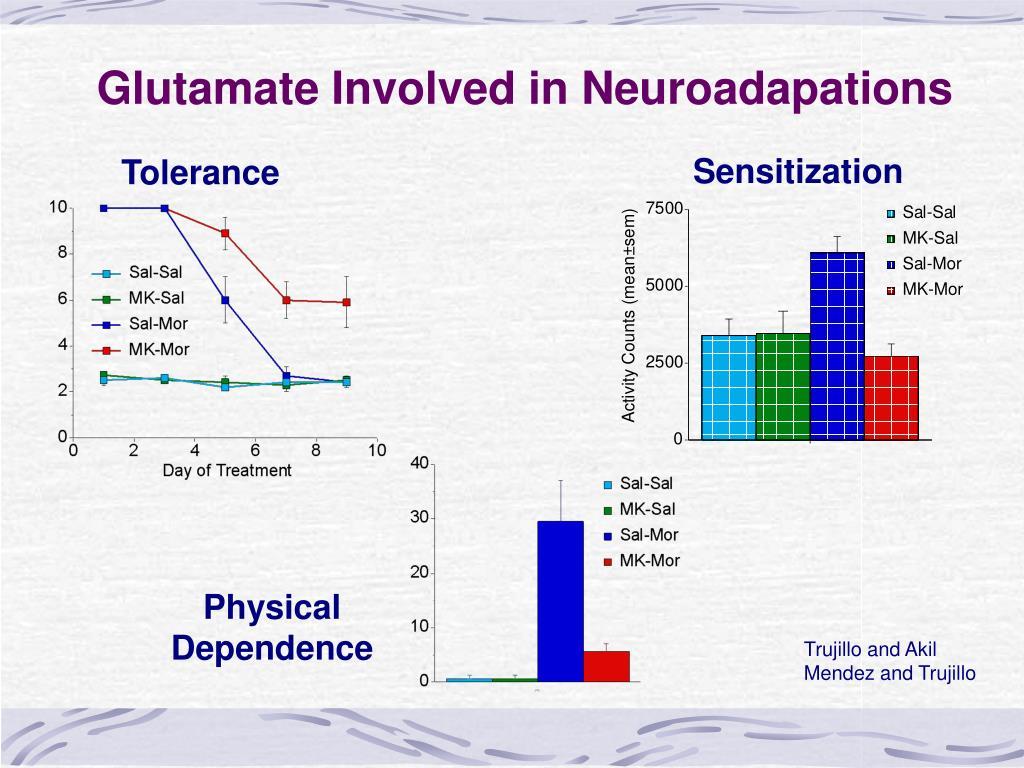 Glutamate Involved in Neuroadapations
