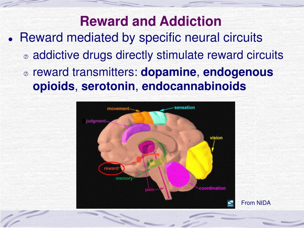 Reward and Addiction
