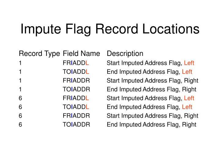Impute Flag Record Locations