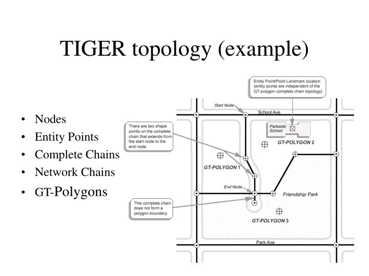 TIGER topology (example)