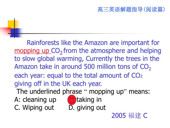 Rainforests like the Amazon are important for