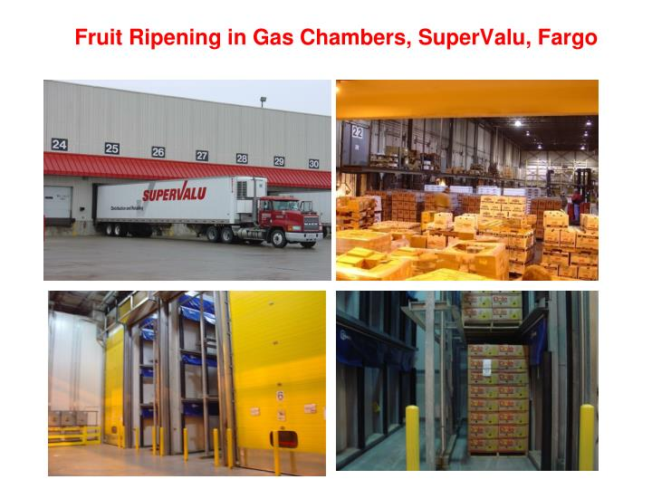Fruit Ripening in Gas Chambers, SuperValu, Fargo