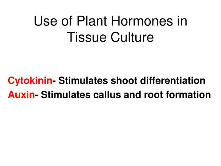 Use of Plant Hormones in Tissue Culture