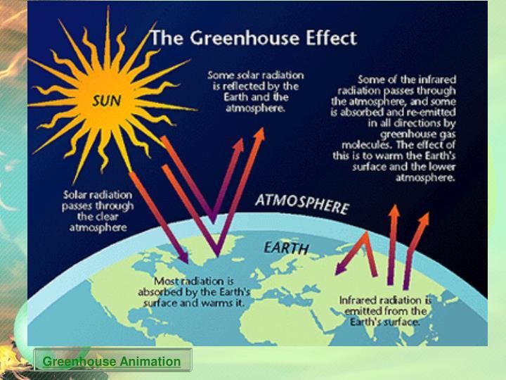 Greenhouse Animation