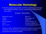 molecular homology