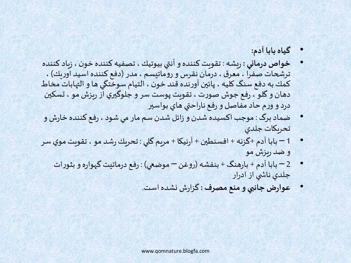 گياه بابا آدم: