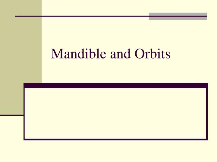 Mandible and orbits
