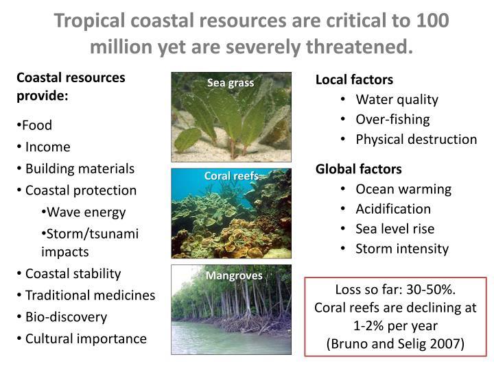 Tropical coastal