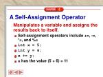 a self assignment operator