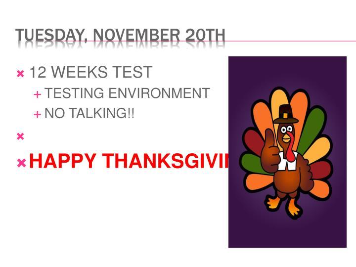 12 WEEKS TEST