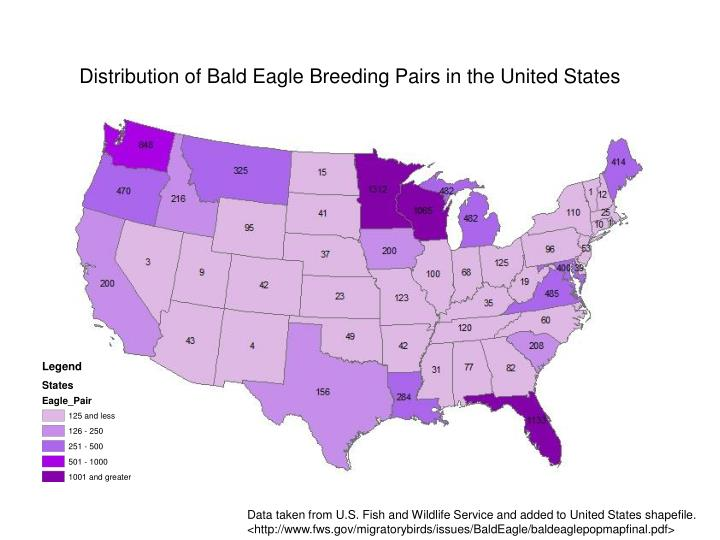 Distribution of Bald Eagle Breeding Pairs in the United States