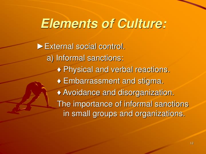 Elements of Culture: