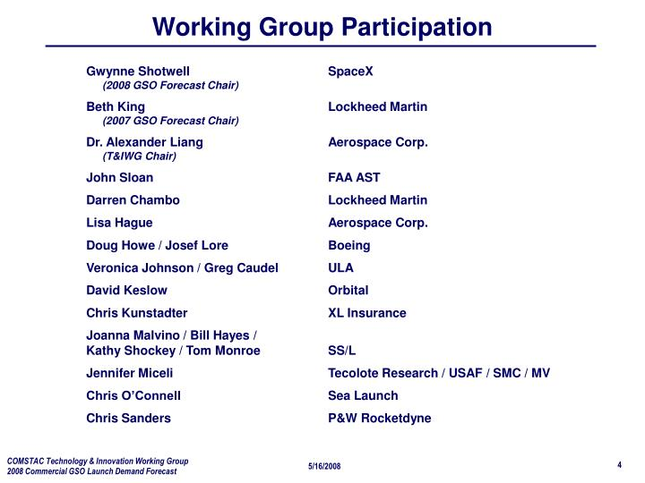 Working Group Participation