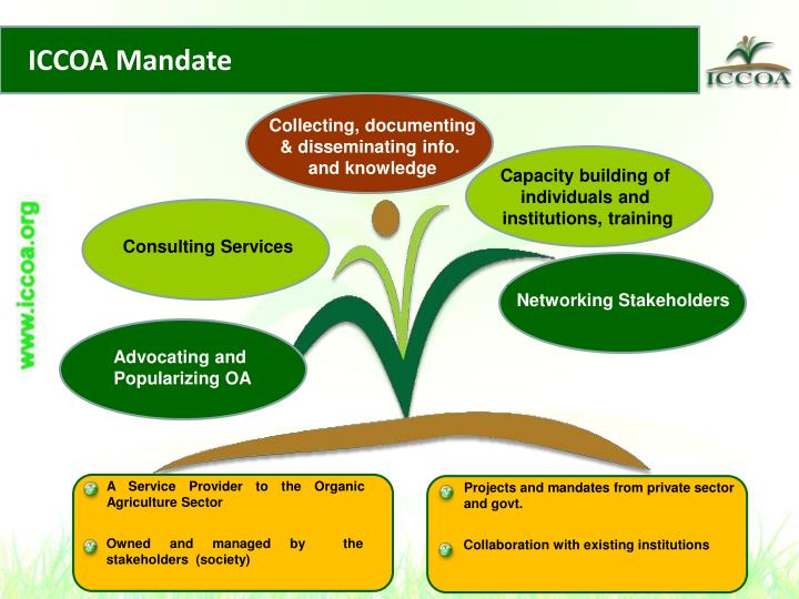 ICCOA Mandate