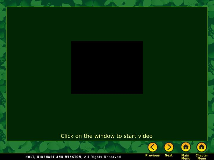 Click on the window to start video