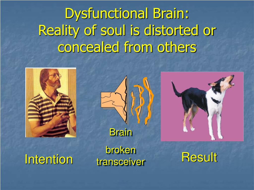 Dysfunctional Brain: