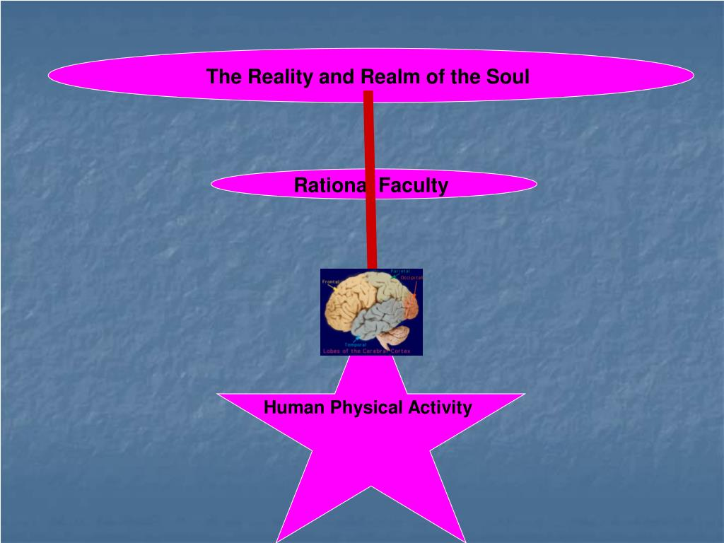 The Reality and Realm of the Soul