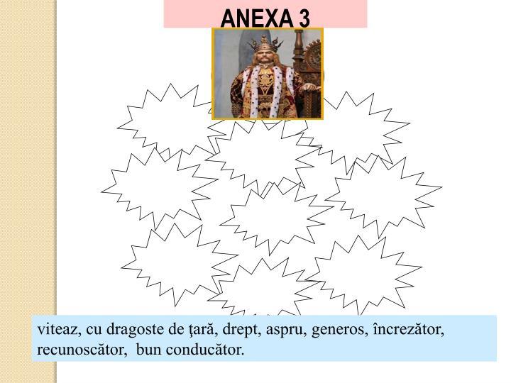 ANEXA 3
