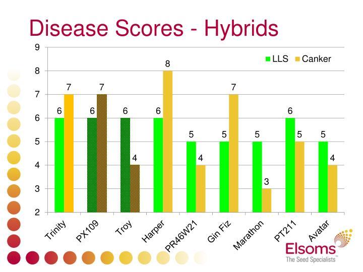 Disease Scores - Hybrids
