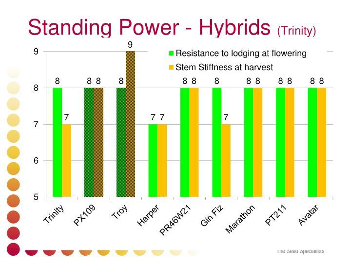 Standing Power -