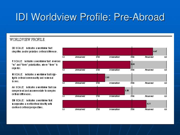 IDI Worldview Profile: Pre-Abroad