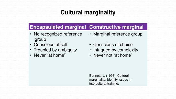 Cultural marginality