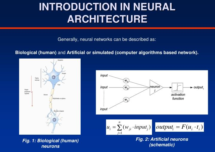 INTRODUCTION IN NEURAL ARCHITECTURE