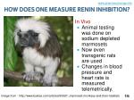 how does one measure renin inhibition