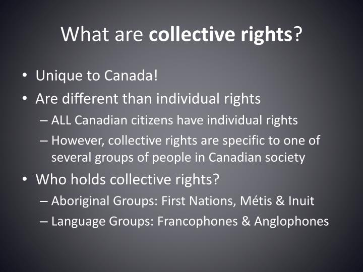 What are collective rights1