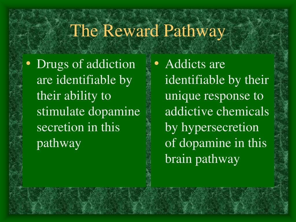 Drugs of addiction are identifiable by their ability to stimulate dopamine secretion in this pathway