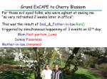 grand excape to cherry blossom